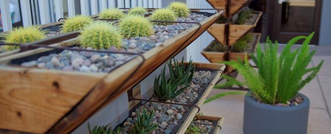 Six Steps to Install Your Vertical Garden Flower Street Urban Garden