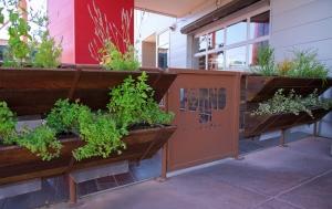 wall mounted indoor herb garden