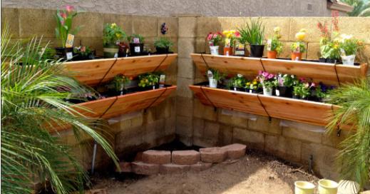 backyard vertical gardening image 1